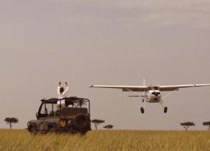 flying-safari
