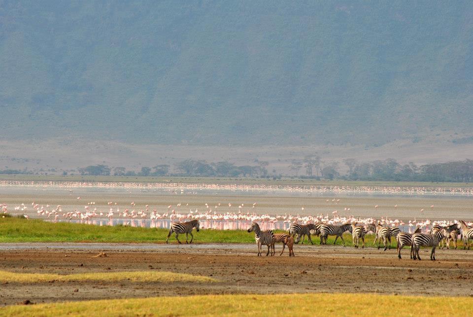 Travel to Africa | Ngorongoro Conservation Area
