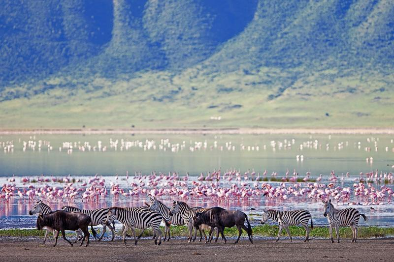 ngorongoro (3 of 13)