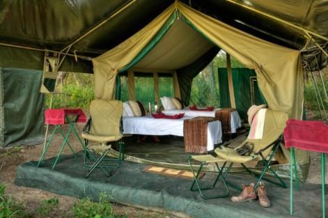 safari_camping_2