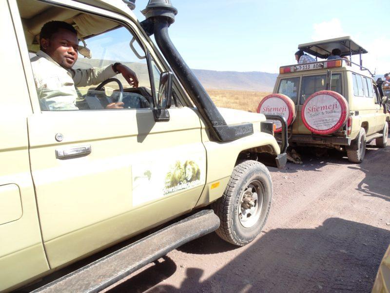 Alex Safari Driver  Shadows of Africa
