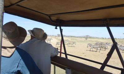 Father and Son Safari