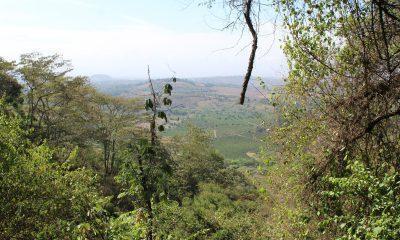 Between Ngorongoro & Manyara. Elephant Caves Walk