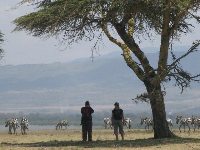 crescent island lake naivasha kenya