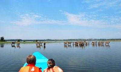 East African Destinations for a Family Safari