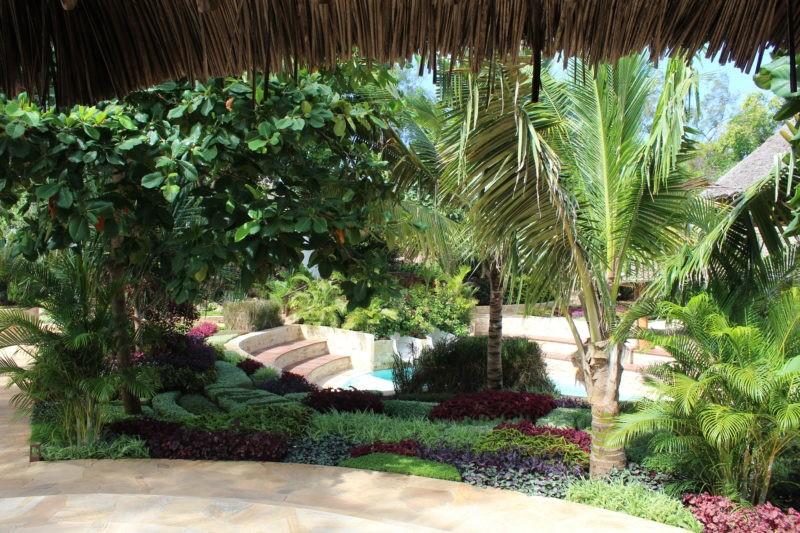 tulia-garden-beauty