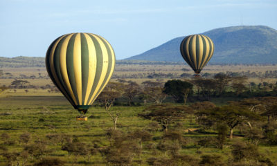 Where to Stay on the Serengeti: The Ultimate Guide to Serengeti Safari Lodges and Camps