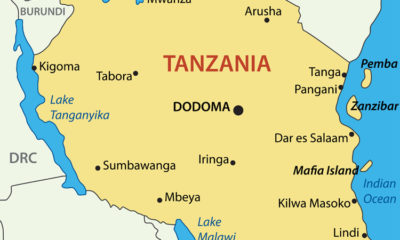 Tsetse Flies in Tarangire National Park and Tanzania: What to Expect