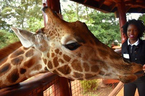 Giraff centre