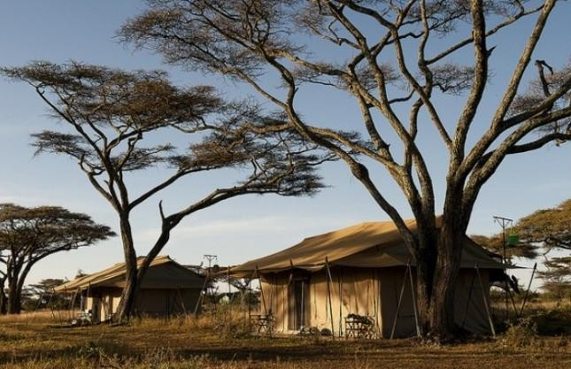 Moru Under Canvas Tented Camp