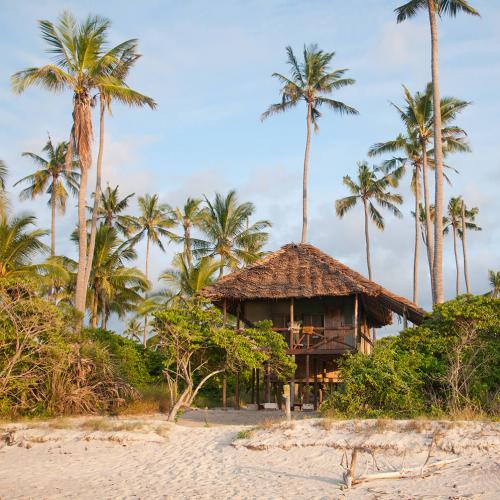 Safari from Zanzibar - Two days Saadani - A Night on Safari - By Boat