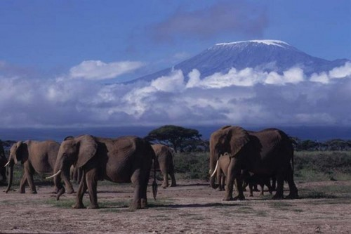 Singita Serengeti House -safari to africa accommodation