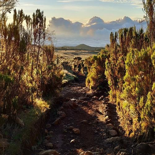 One Day Hike - Mount Kilimanjaro
