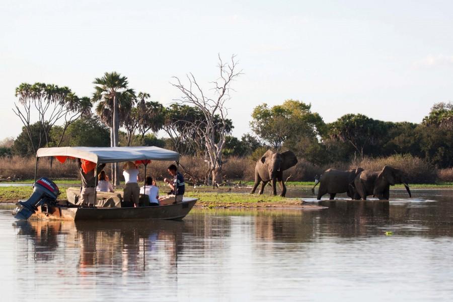 Boat Safari in Nyerere National Park