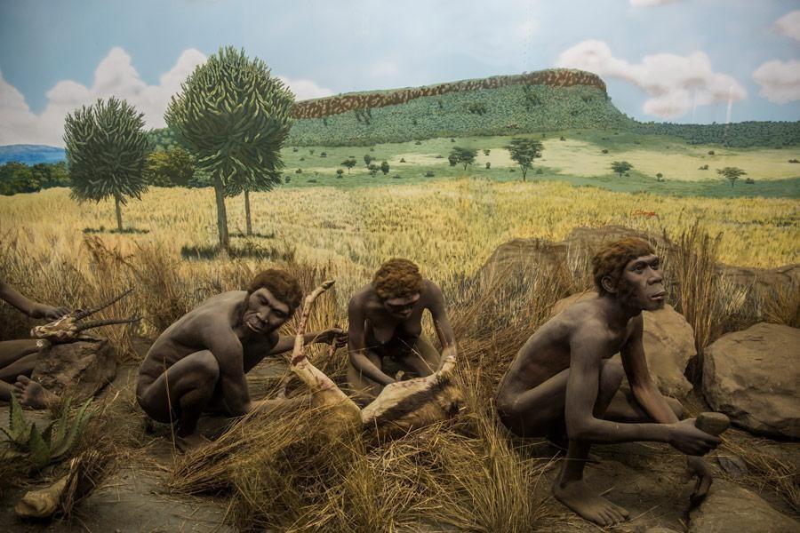 Nacionalni muzej Nairobi