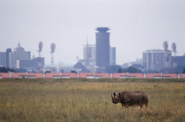 Narodni park Nairobi