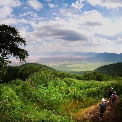 Safari from Zanzibar - Kilimanjaro - Lake Manyara - Ngorongoro - Three Days