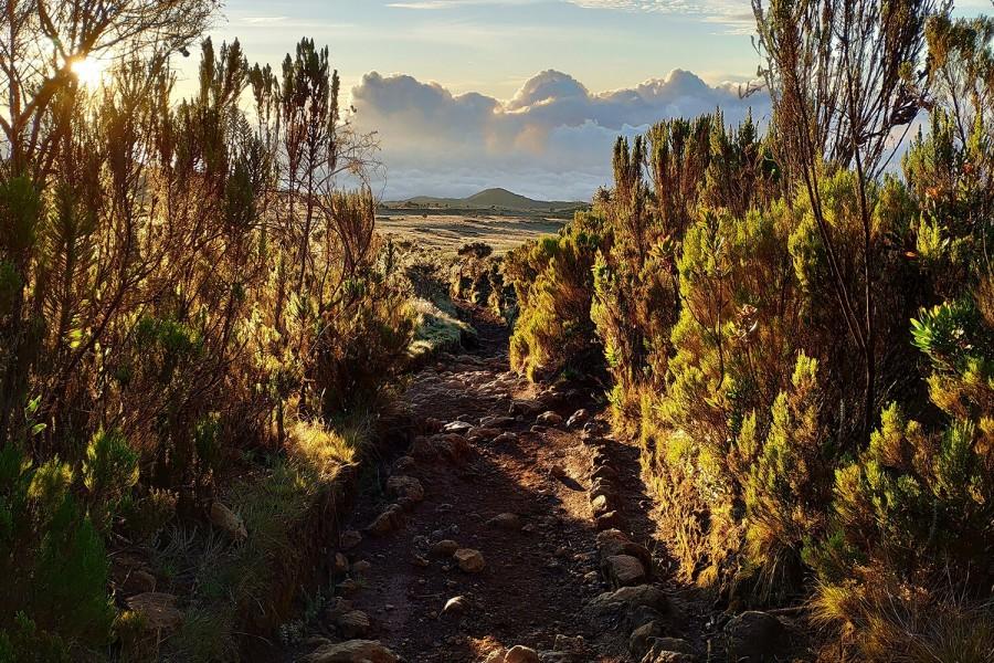 Один день восхождения на гору Килиманджаро