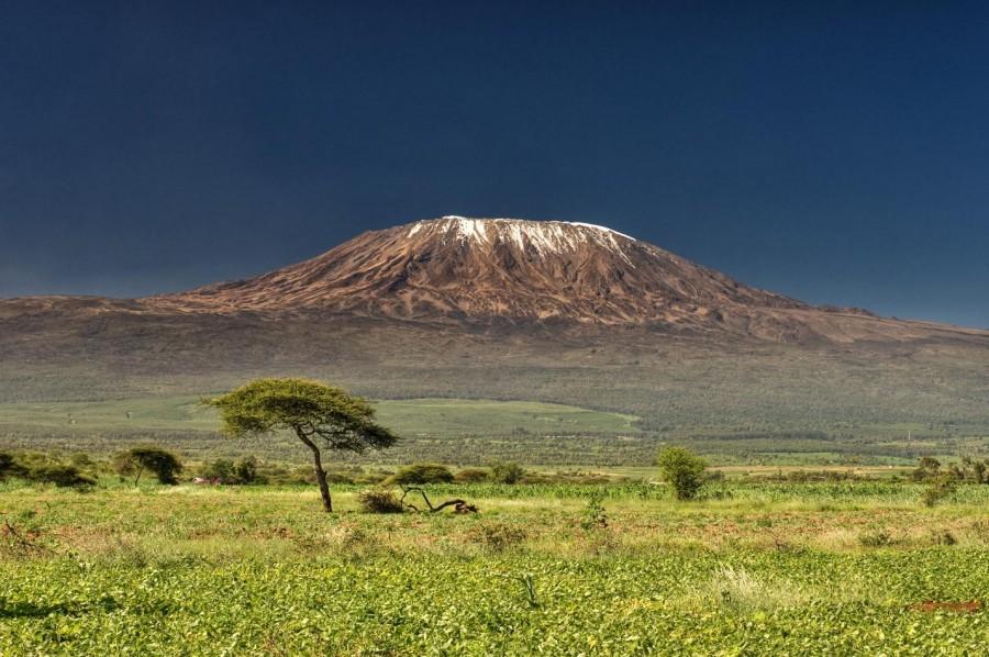 Northern Circuit  - Climb Kilimanjaro - 9 days