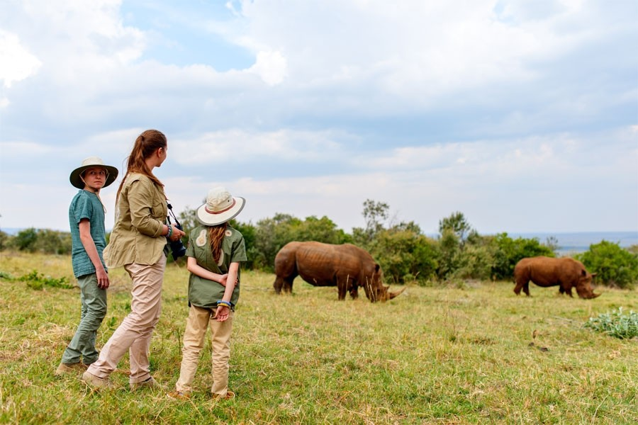 Six Day Big Five and Special Five Safari