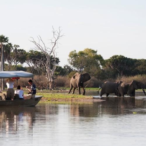 Safari from Zanzibar - Selous/Nyerere National Park - Three Days