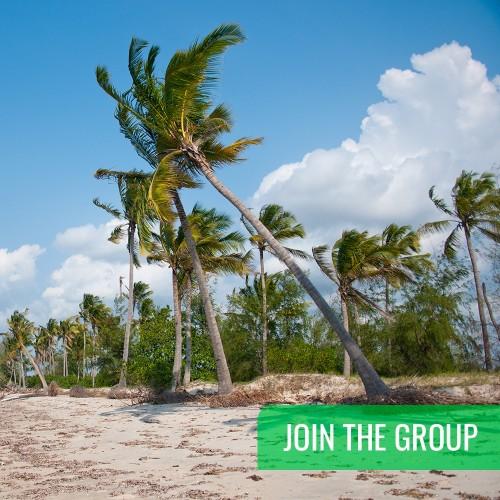 JOIN THE GROUP - Safari from Zanzibar - Saadani National Park - Day Trip