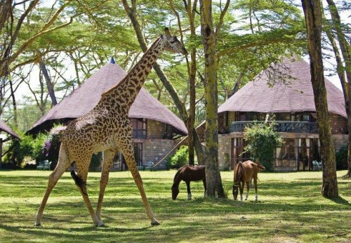 Lake Naivasha Sopa Lodge