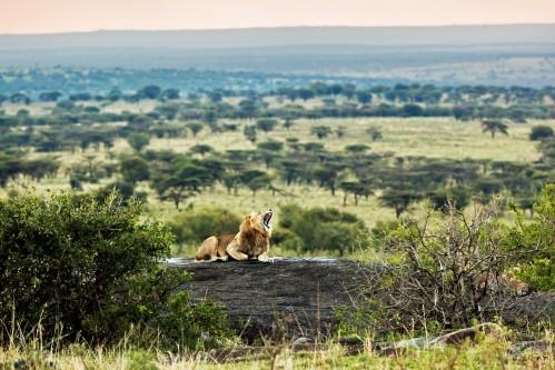 Active Safari with Empakai Hiking- 6 Days