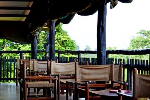 Treetop Hotel in Kenya