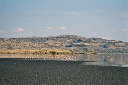 Lake Natron in northern Tanzania
