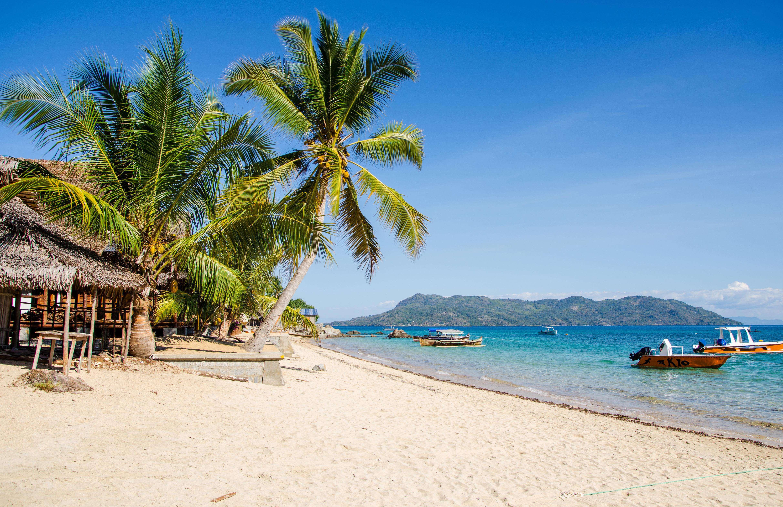 Madagascar Honeymoon