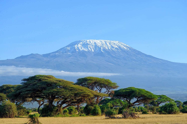 Kenya Amboseli Kinimanjaro