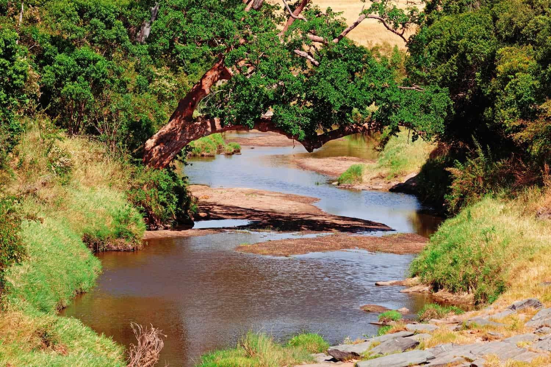Kenya Masai Mara river