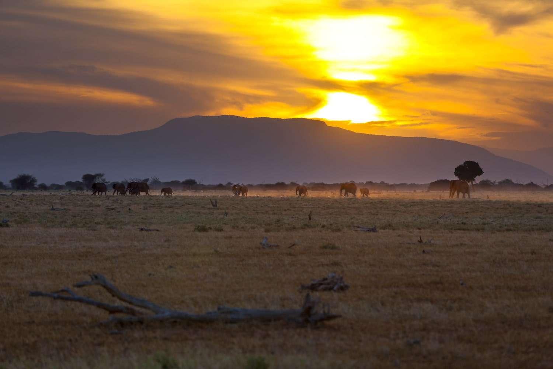 Sunset landscape Tsavo East National Park in Kenya