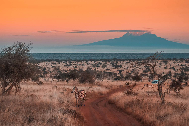 Kenya Tsavo West
