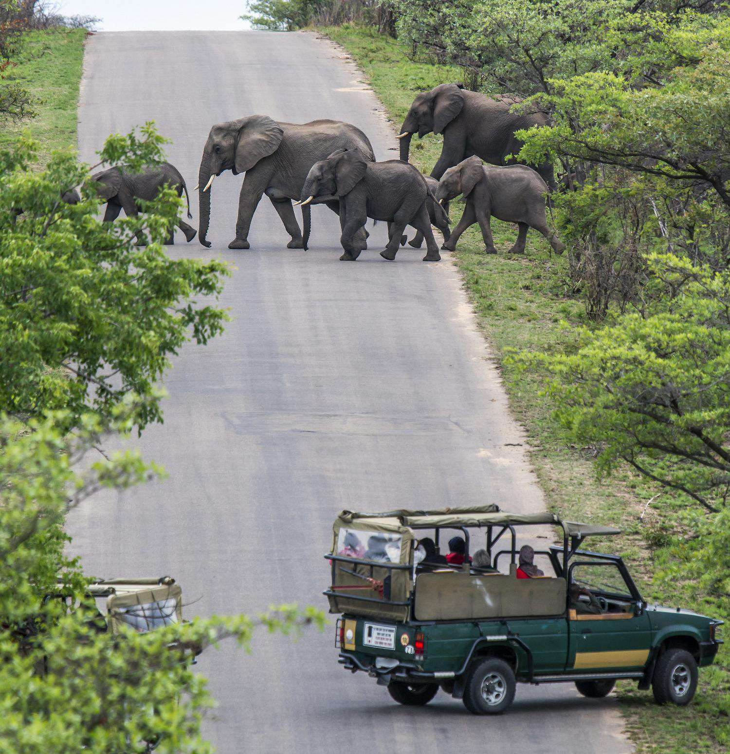 Zanzibar Activities in Tanzania