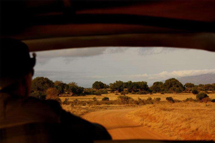 Kenya Safari and Tours