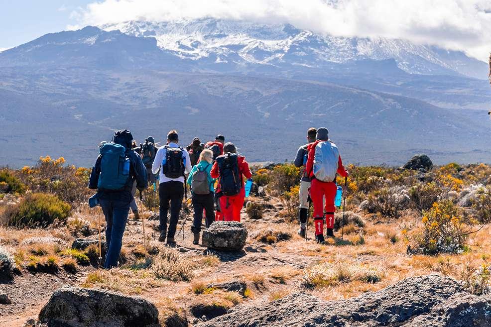The path along the slope of volcano Kilimanjaro between Horombo and Kibo - Tanzania