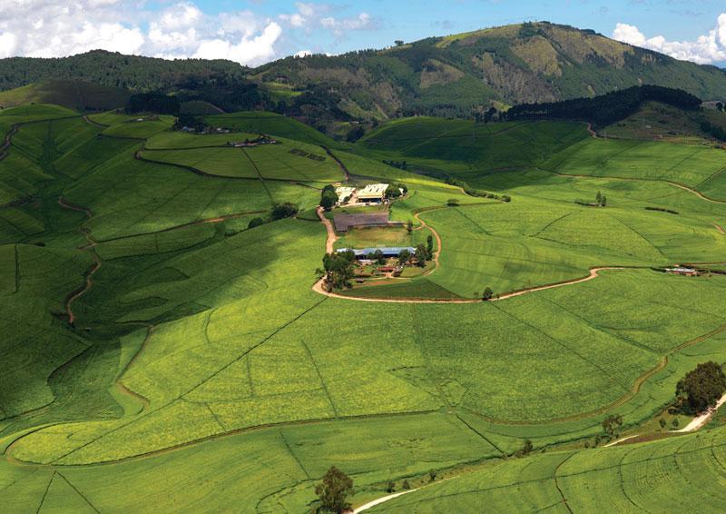 Гид по Руанде