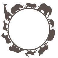Soa circle