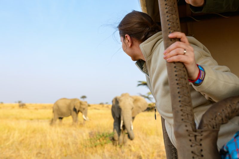 Best safari experience in Tanzania