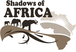 Shadows Of Africa | Safari tour operator