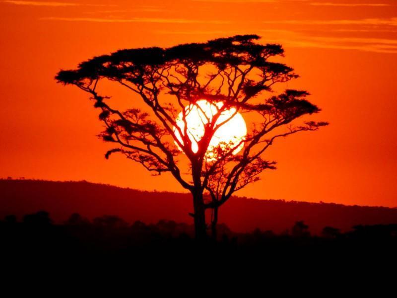 An unforgettable Serengeti sunrise.