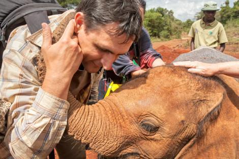 Elephant_Orphanage_Small