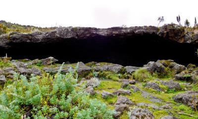 kilimanjaro cave