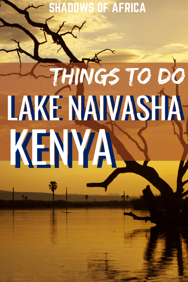 Traveling in Kenya? Why not take a trip to Lake Naivasha? Go on a boat safari, look for flamingos or visit the Cradle of Mankind of this epic Kenyan safari adventure! #kenya #lakenaivasha #africa #safari #travel