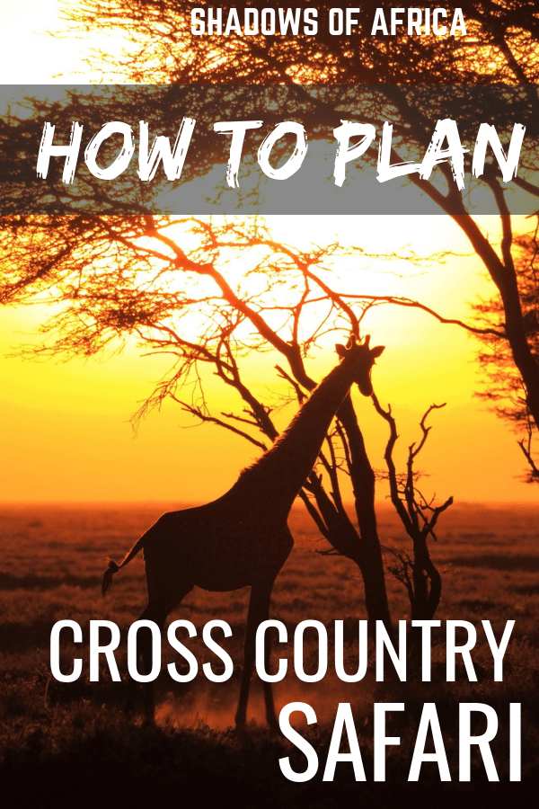 Are you headed on a cross country safari in East Africa? Plan the ultimate safari trip in Africa with our cross country safari guide! #africa #eastafrica #tanzania #kenya #safari #travel