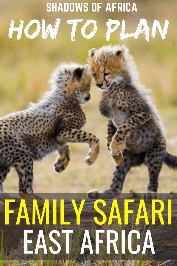 Don't leave the kids at home! You can plan an east Africa family safari in Kenya and Tanzania. There are plenty of family safari activities to enjoy with your kids! #familytravel #safari #africa #tanzania #kenya