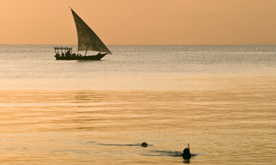The Best Zanzibar Packages: Zanzibar Hotels with Amazing Deals