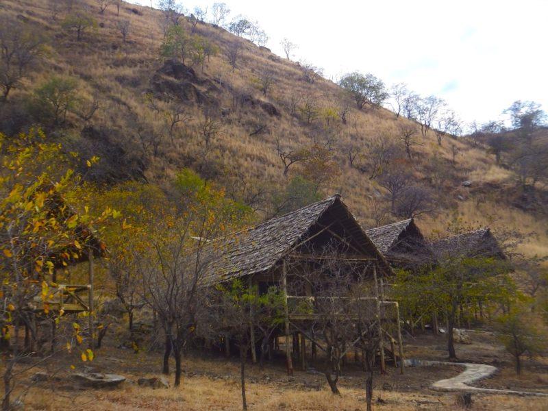 Sangaiwe-lodge-tarangire-np